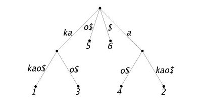 "A suffix tree representing the string ""kakao"""